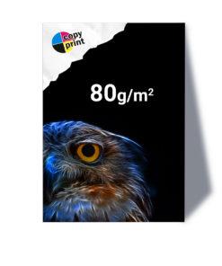 Großformatdruck auf 80g/m² Papier