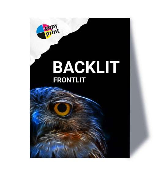 Großformatdruck auf Backlit/Frontlit