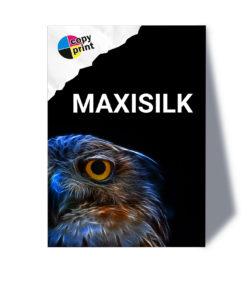 Großformatdruck auf MaxiSilk